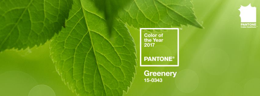 Pantone reveals much-anticipated 2017 Colour of the Year